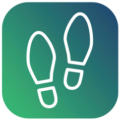 GT-icon-shoe