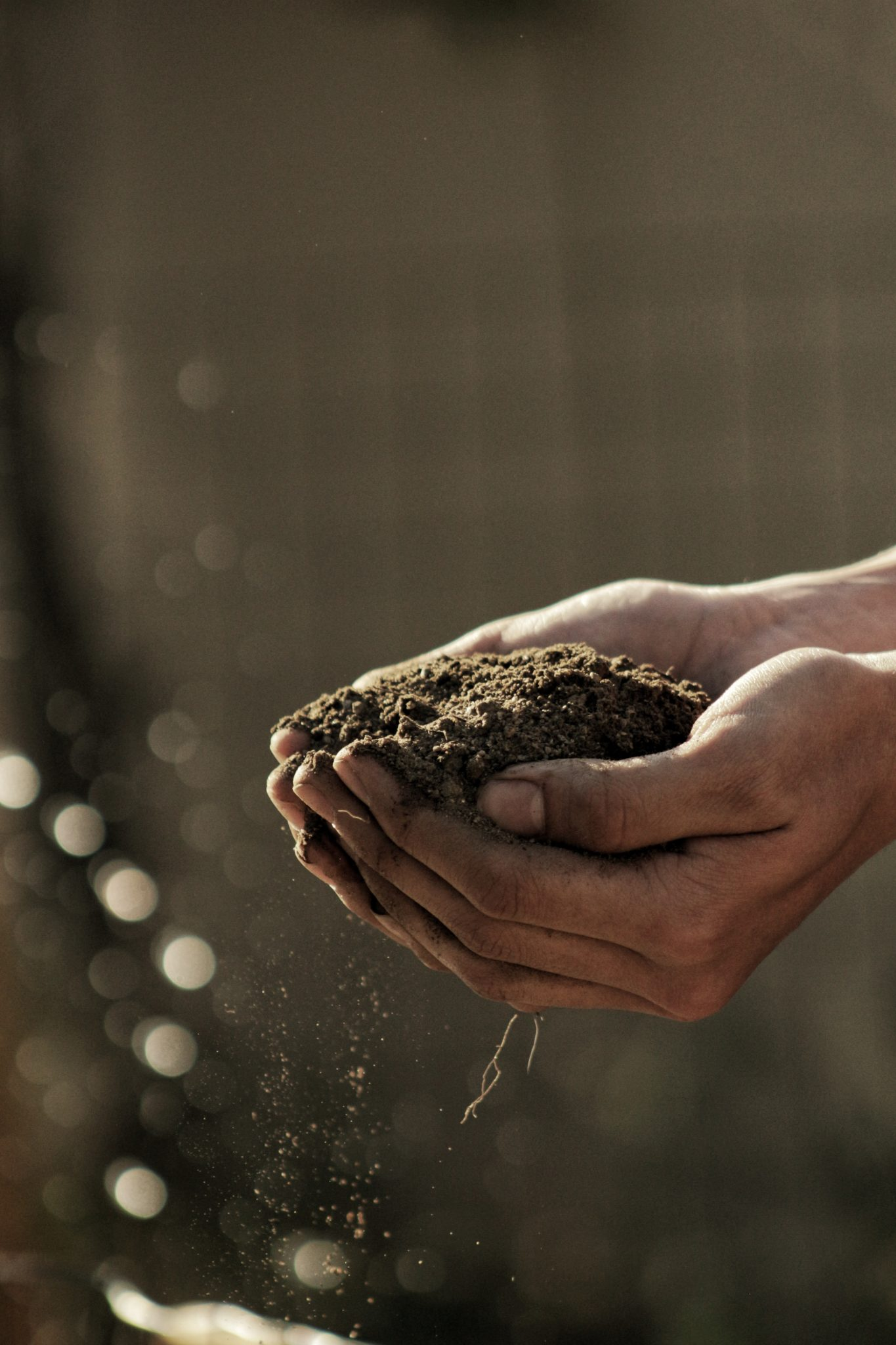 Preparing the Ground to Lay Turf on Your Property