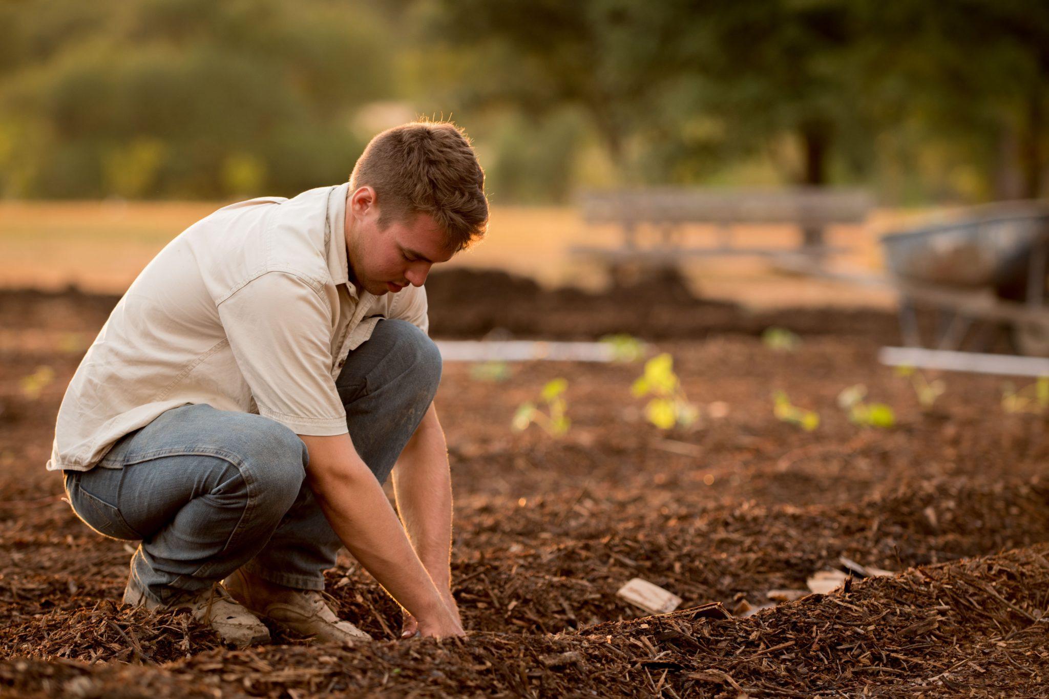 Duzi Turf Organics Compost and Topsoil